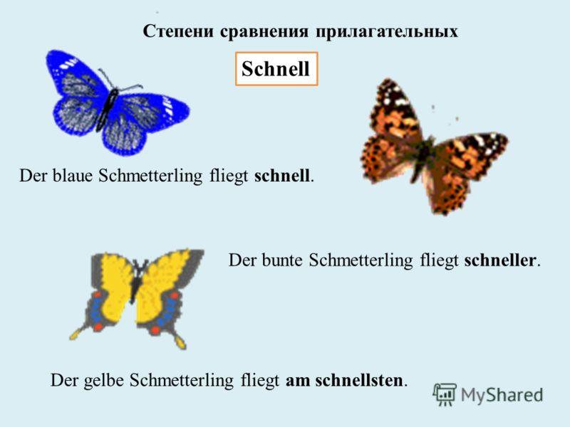 Schnell Der blaue Schmetterling fliegt schnell. Der bunte Schmetterling fliegt schneller. Der gelbe Schmetterling fliegt am schnellsten. Степени сравнения прилагательных