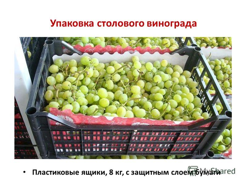 Упаковка столового винограда Пластиковые ящики, 8 кг, с защитным слоем бумаги