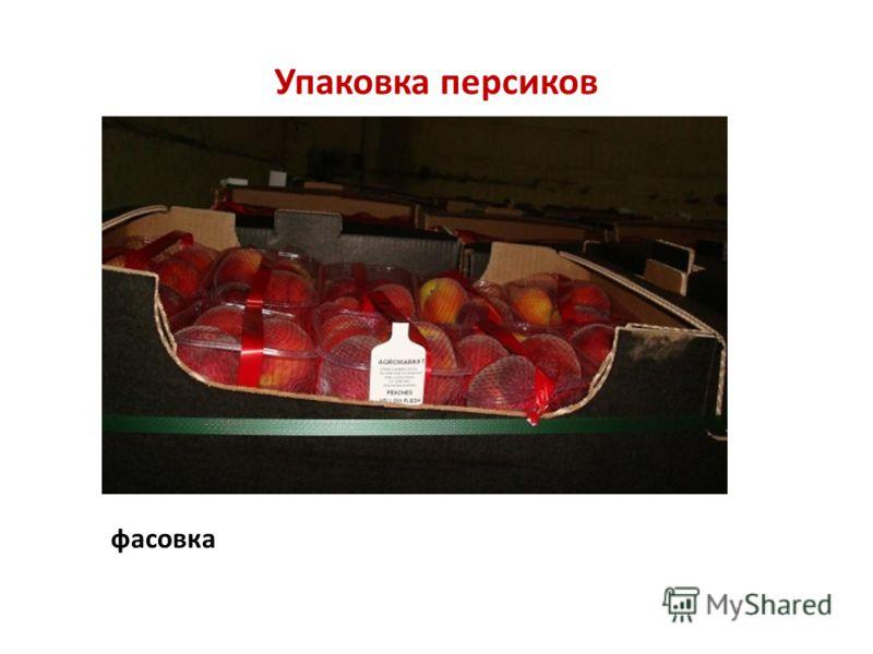 Упаковка персиков фасовка