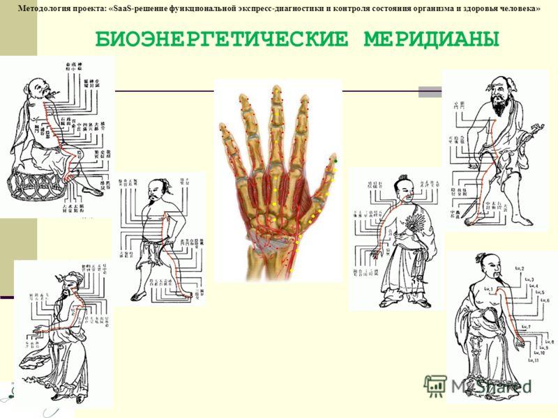 Методология проекта: «SaaS-решение функциональной экспресс-диагностики и контроля состояния организма и здоровья человека» БИОЭНЕРГЕТИЧЕСКИЕ МЕРИДИАНЫ