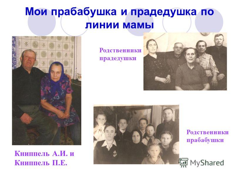 Мои прабабушка и прадедушка по линии мамы Книппель А.И. и Книппель П.Е. Родственники прадедушки Родственники прабабушки