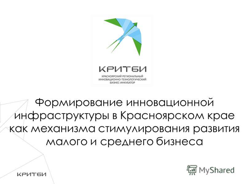 Формирование инновационной инфраструктуры в Красноярском крае как механизма стимулирования развития малого и среднего бизнеса