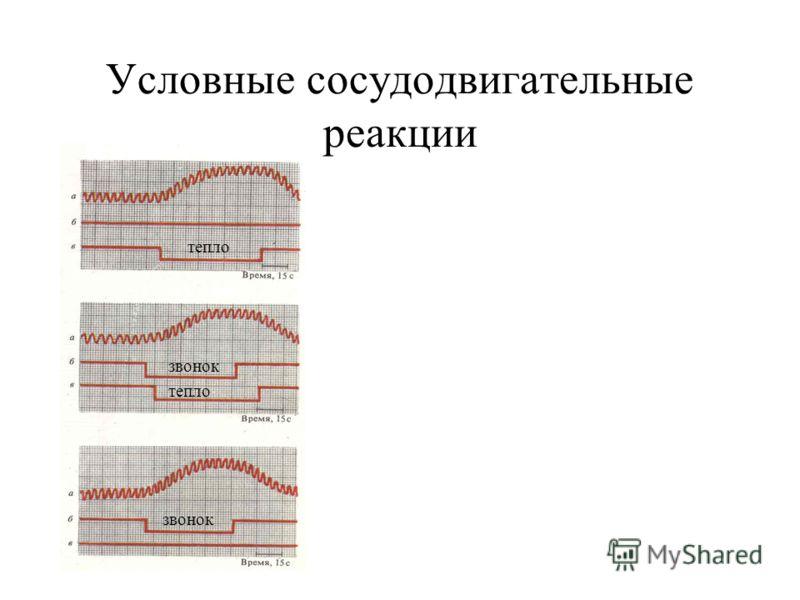 Условные сосудодвигательные реакции звонок тепло звонок
