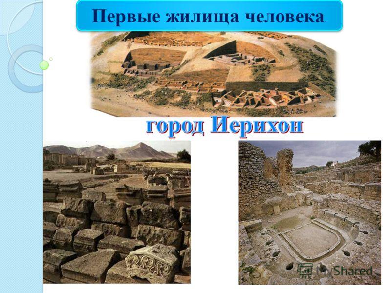Первые жилища человека.