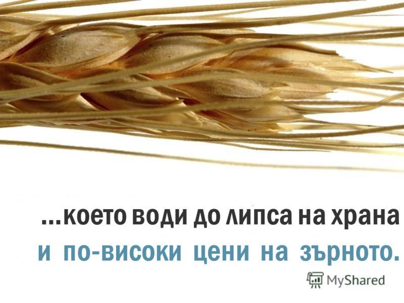 Изчерпването на водоизточниците ще доведе до намаляване на зърнената реколта…