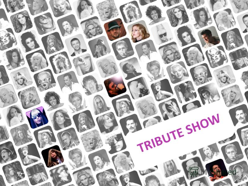 TRIBUTE SHOW