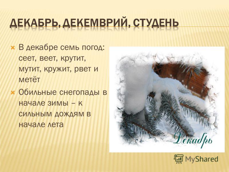 В декабре семь погод: сеет, веет, крутит, мутит, кружит, рвет и метёт Обильные снегопады в начале зимы – к сильным дождям в начале лета