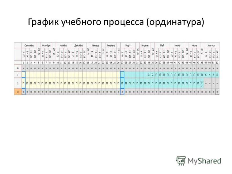 График учебного процесса (ординатура)