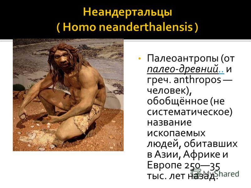 Палеоантропы (от палео-древний.. и греч. anthropos человек), обобщённое (не систематическое) название ископаемых людей, обитавших в Азии, Африке и Европе 25035 тыс. лет назад...