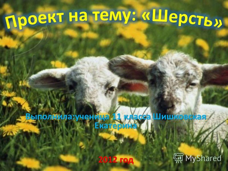 Выполнила:ученица 11 класса Шишковская Екатерина 2012 год