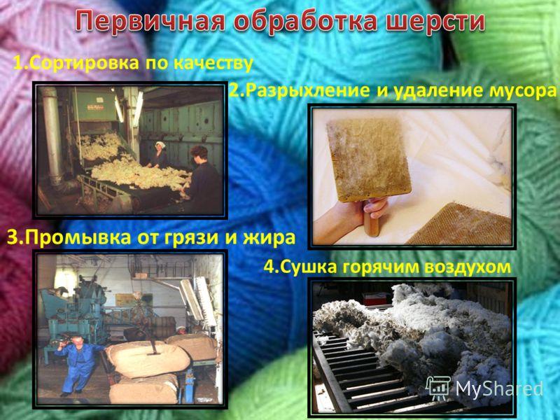 1.Сортировка по качеству 3.Промывка от грязи и жира 2.Разрыхление и удаление мусора 4.Сушка горячим воздухом
