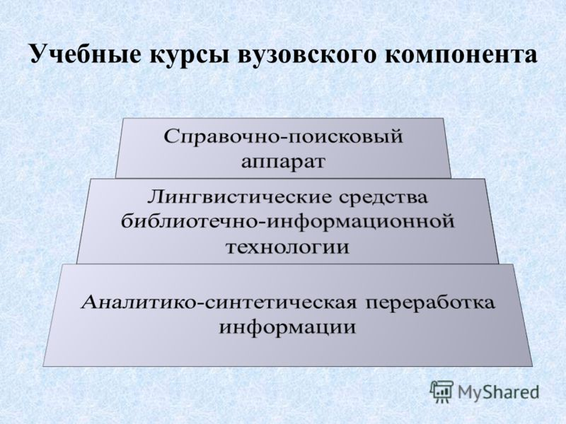 Учебные курсы вузовского компонента