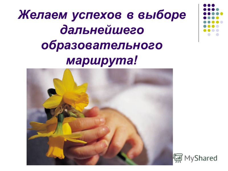 Желаем успехов в выборе дальнейшего образовательного маршрута!