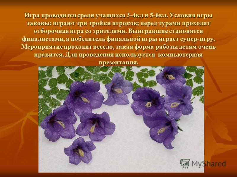 Ко Всемирному «Дню цветов», который отмечается 21 марта, с большим успехом проводится игра-викторина «Поле чудес» - «Легенды и были о цветах»