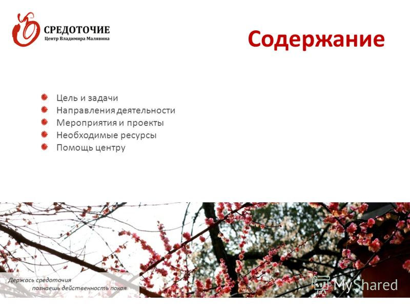 Содержание www.sredotochie.ru2 Цель и задачи Направления деятельности Мероприятия и проекты Необходимые ресурсы Помощь центру