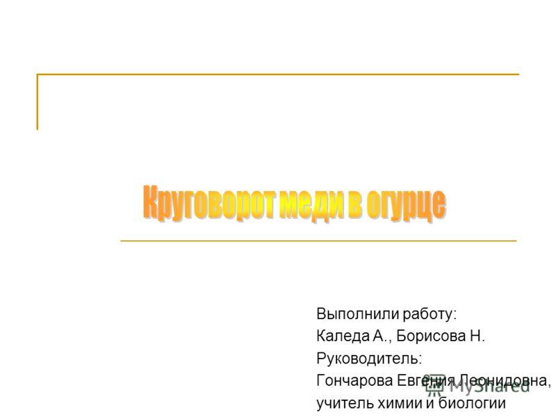 Выполнили работу: Каледа А., Борисова Н. Руководитель: Гончарова Евгения Леонидовна, учитель химии и биологии