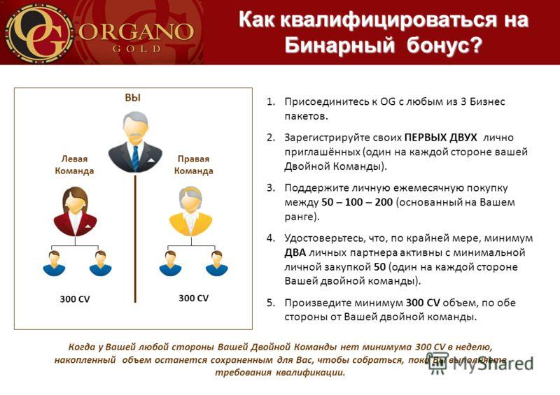 ВЫ Левая Команда Правая Команда 300 CV 1.Присоединитесь к OG с любым из 3 Бизнес пакетов. 2.Зарегистрируйте своих ПЕРВЫХ ДВУХ лично приглашённых (один на каждой стороне вашей Двойной Команды). 3.Поддержите личную ежемесячную покупку между 50 – 100 –