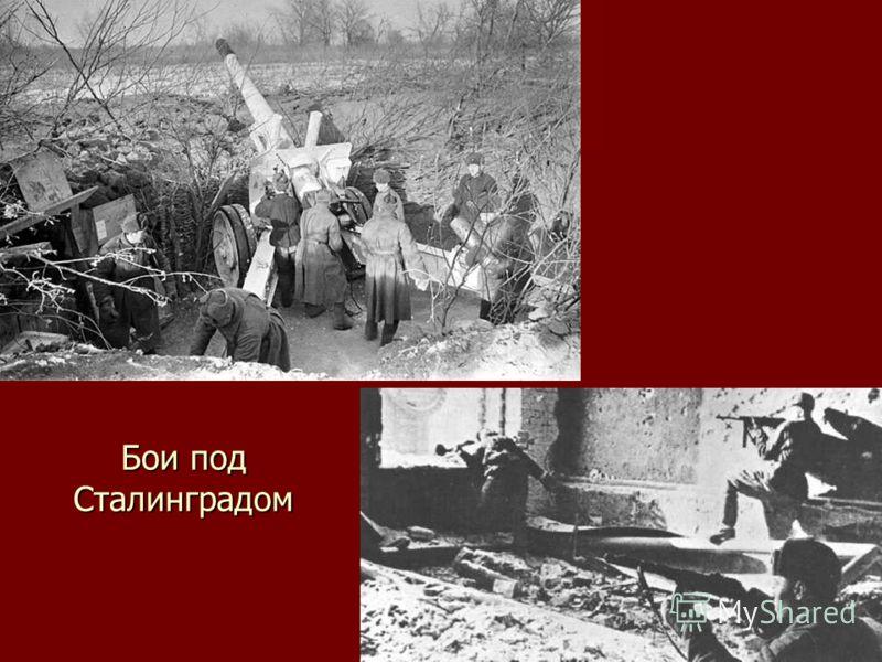 Бои под Сталинградом