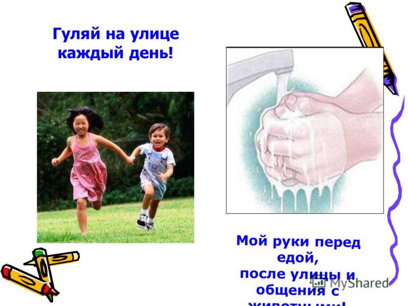 Гуляй на улице каждый день! Мой руки перед едой, после улицы и общения с животными!