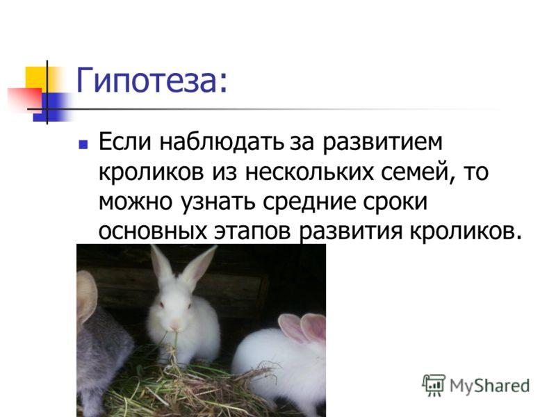 Гипотеза: Если наблюдать за развитием кроликов из нескольких семей, то можно узнать средние сроки основных этапов развития кроликов.