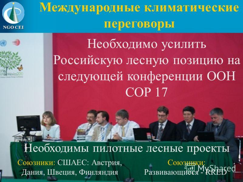 NGO CEI Международные климатические переговоры Необходимо усилить Российскую лесную позицию на следующей конференции ООН COP 17 ООН COP 15 в Копенгагене президент РФ Дмитрий Медведев подчеркнул необходимость учета российских лесов в программах и меха