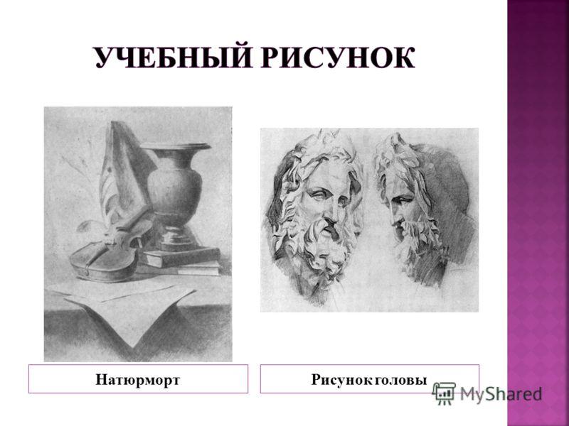 НатюрмортРисунок головы