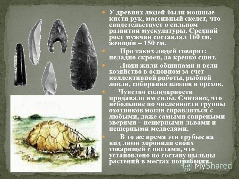У древних людей были мощные кисти рук, массивный скелет, что свидетельствует о сильном развитии мускулатуры. Средний рост мужчин составлял 160 см, женщин – 150 см. Про таких людей говорят: неладно скроен, да крепко сшит. Люди жили общинами и вели хоз