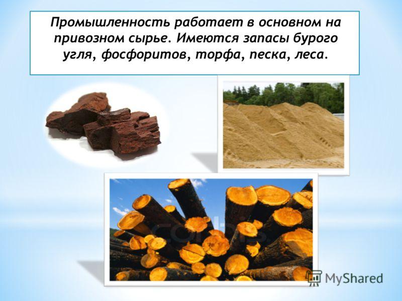 Промышленность работает в основном на привозном сырье. Имеются запасы бурого угля, фосфоритов, торфа, песка, леса.