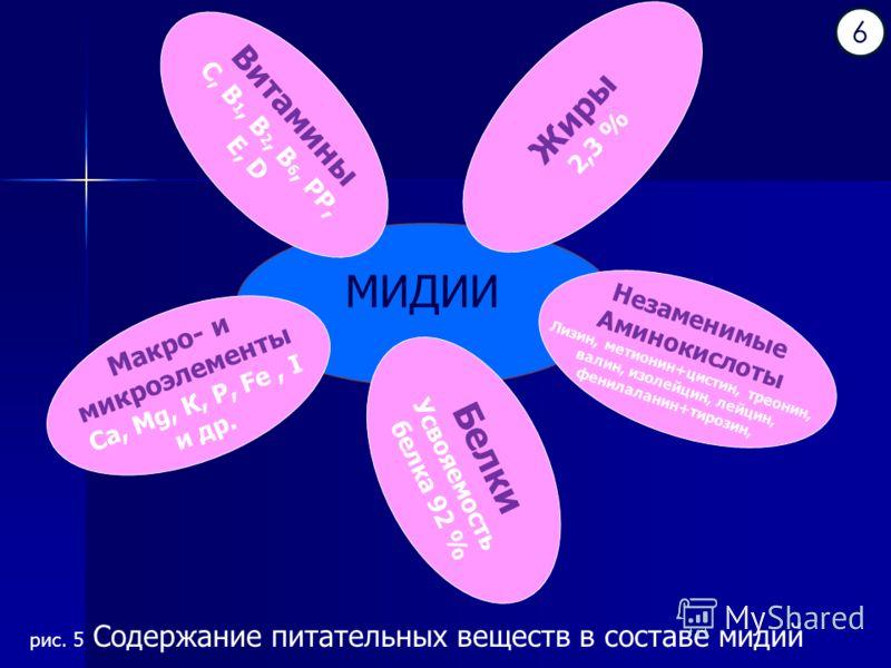 МИДИИ Белки Усвояемость белка 92 % Витамины С, В 1, В 2, В 6, РР, Е, D Макро- и микроэлементы Са, Mg, К, Р, Fe, I и др. Незаменимые Аминокислоты Лизин, метионин+цистин, треонин, валин, изолейцин, лейцин, фенилаланин+тирозин, Жиры 2,3 % 6 рис. 5 Содер