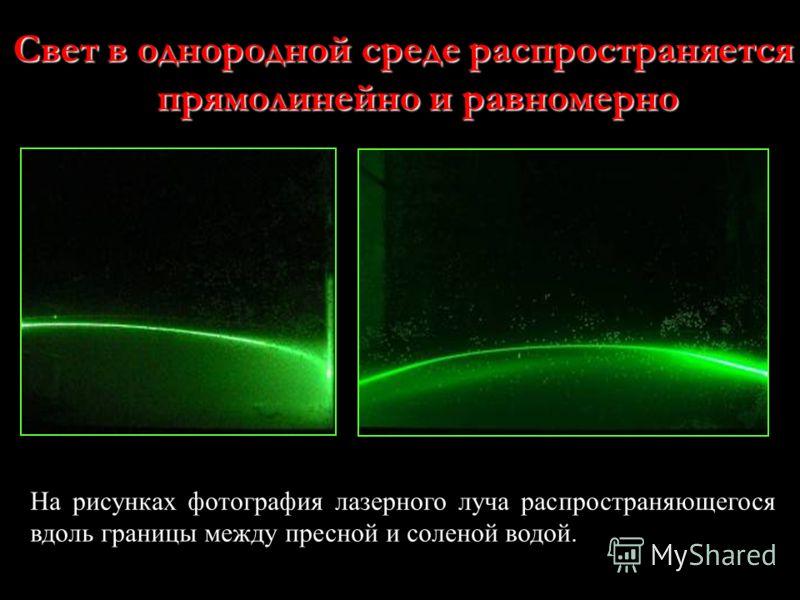 На рисунках фотография лазерного луча распространяющегося вдоль границы между пресной и соленой водой. Свет в однородной среде распространяется прямолинейно и равномерно