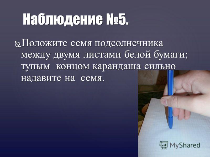Положите семя подсолнечника между двумя листами белой бумаги; тупым концом карандаша сильно надавите на семя. Положите семя подсолнечника между двумя листами белой бумаги; тупым концом карандаша сильно надавите на семя. Наблюдение 5.