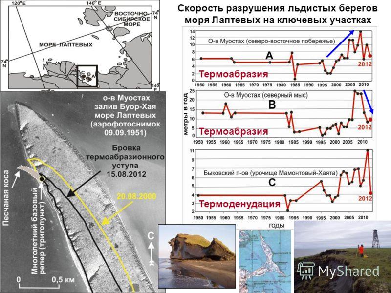 Скорость разрушения льдистых берегов моря Лаптевых на ключевых участках Термоабразия Термоденудация