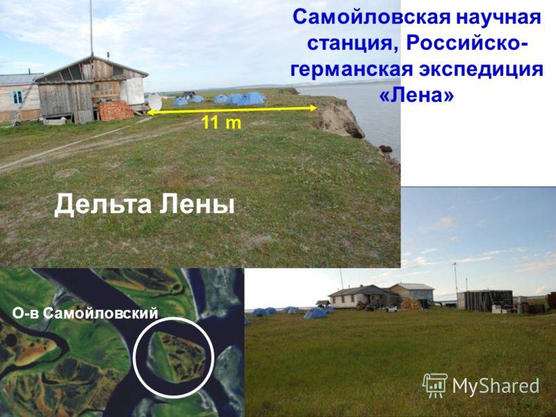 Самойловская научная станция, Российско- германская экспедиция «Лена» 11 m Дельта Лены О-в Самойловский