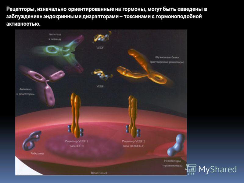 Рецепторы, изначально ориентированные на гормоны, могут быть «введены в заблуждение» эндокринными дизрапторами – токсинами с гормоноподобной активностью.