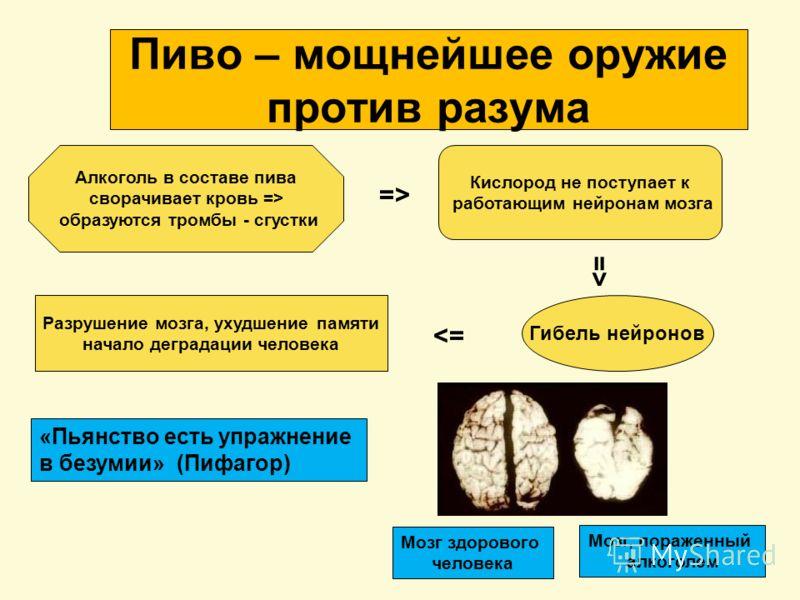 Пиво – мощнейшее оружие против разума Алкоголь в составе пива сворачивает кровь => образуются тромбы - сгустки Кислород не поступает к работающим нейронам мозга Гибель нейронов Разрушение мозга, ухудшение памяти начало деградации человека =>=> =>=> =