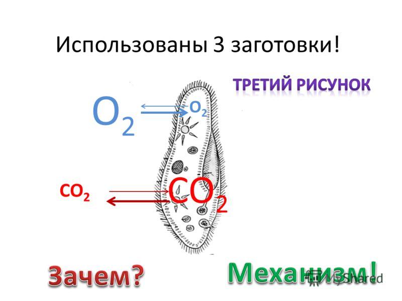 Использованы 3 заготовки! О2О2 СО 2 О2О2