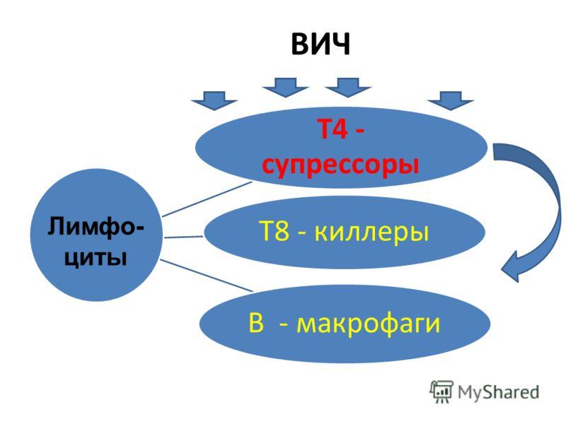ВИЧ Т4 - супрессоры Т8 - киллеры В - макрофаги Лимфо- циты