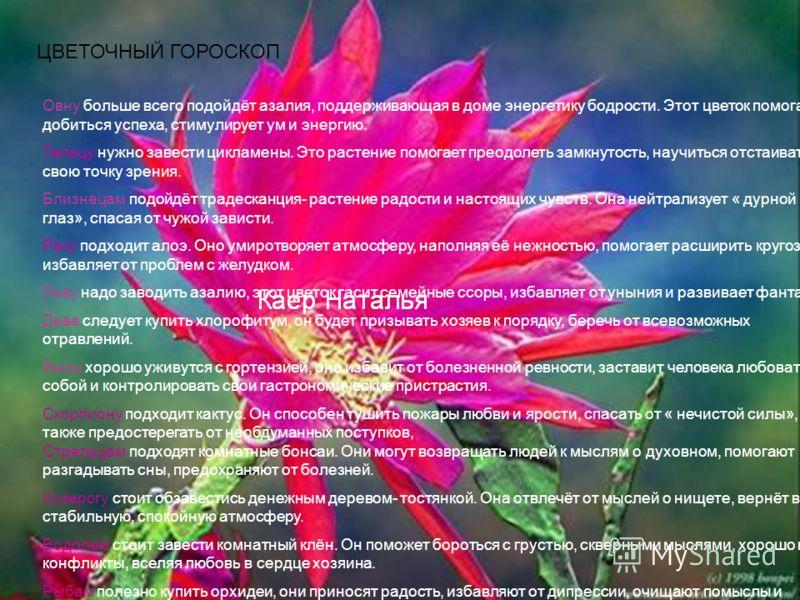 ЦВЕТОЧНЫЙ ГОРОСКОП Овну больше всего подойдёт азалия, поддерживающая в доме энергетику бодрости. Этот цветок помогает добиться успеха, стимулирует ум и энергию. Тельцу нужно завести цикламены. Это растение помогает преодолеть замкнутость, научиться о