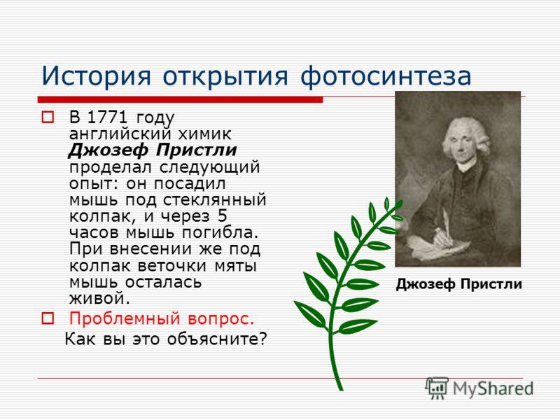 История открытия фотосинтеза В 1771 году английский химик Джозеф Пристли проделал следующий опыт: он посадил мышь под стеклянный колпак, и через 5 часов мышь погибла. При внесении же под колпак веточки мяты мышь осталась живой. Проблемный вопрос. Как