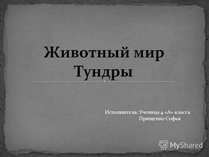 Исполнитель: Ученица 4 «А» класса Прищенко Софья