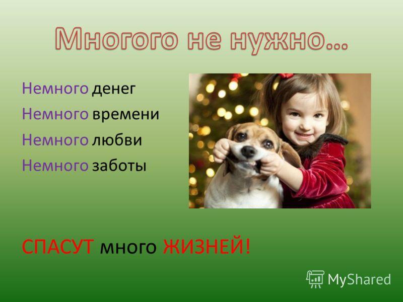 Немного денег Немного времени Немного любви Немного заботы СПАСУТ много ЖИЗНЕЙ!