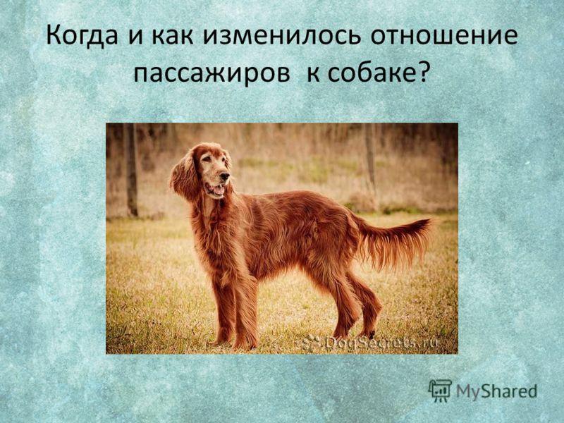 Когда и как изменилось отношение пассажиров к собаке?