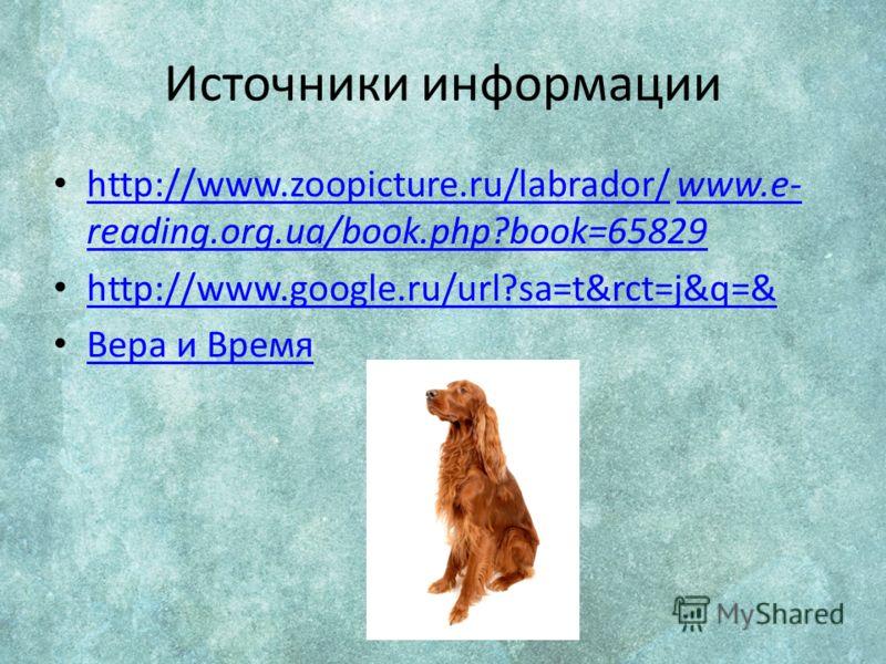 Источники информации http://www.zoopicture.ru/labrador/ www.e- reading.org.ua/book.php?book=65829 http://www.zoopicture.ru/labrador/www.e- reading.org.ua/book.php?book=65829 http://www.google.ru/url?sa=t&rct=j&q=& Вера и Время