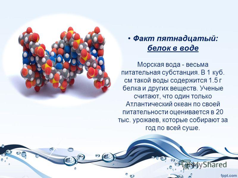 Факт пятнадцатый: белок в воде Морская вода - весьма питательная субстанция. В 1 куб. см такой воды содержится 1.5 г белка и других веществ. Ученые считают, что один только Атлантический океан по своей питательности оценивается в 20 тыс. урожаев, кот