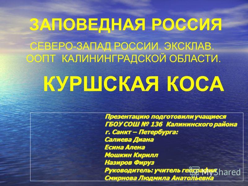 ЗАПОВЕДНАЯ РОССИЯ СЕВЕРО-ЗАПАД РОССИИ. ЭКСКЛАВ. ООПТ КАЛИНИНГРАДСКОЙ ОБЛАСТИ. КУРШСКАЯ КОСА Презентацию подготовили учащиеся Презентацию подготовили учащиеся ГБОУ СОШ 136 Калининского района ГБОУ СОШ 136 Калининского района г. Санкт – Петербурга: г.
