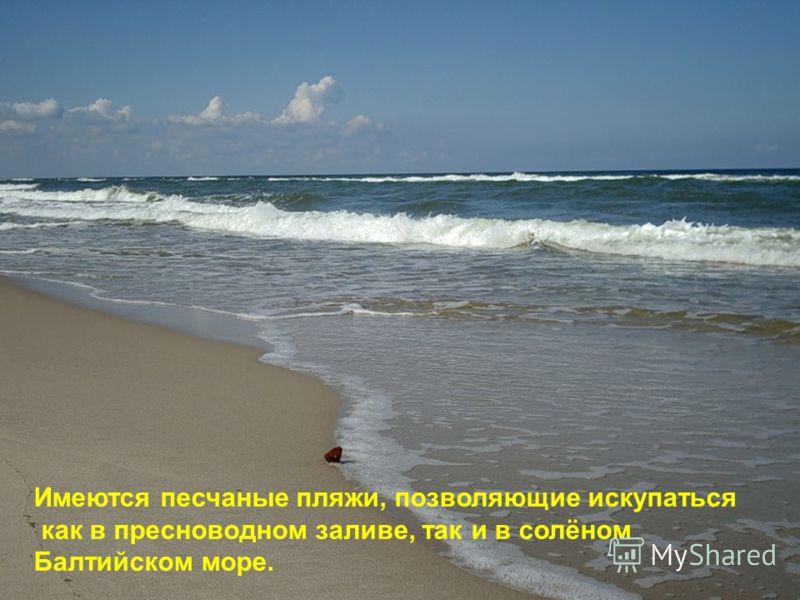 Имеются песчаные пляжи, позволяющие искупаться как в пресноводном заливе, так и в солёном Балтийском море.