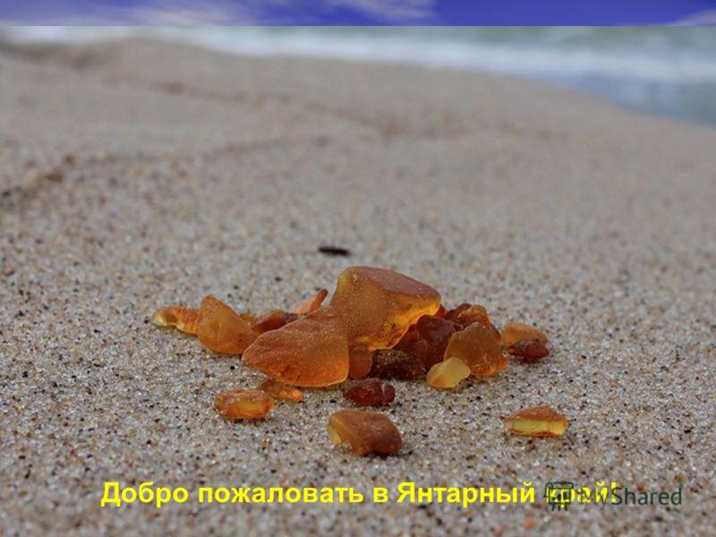 Добро пожаловать в Янтарный край!