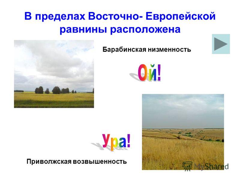 В пределах Восточно- Европейской равнины расположена Барабинская низменность Приволжская возвышенность