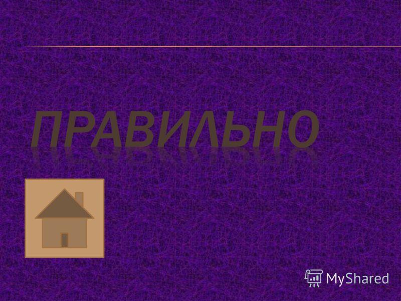 1234 1) НАМОКНУТЬ 2) РАСТЕРЯННО 3) ПРЕЛЕСТНО 4) ОБЪЯСНЯТЬ