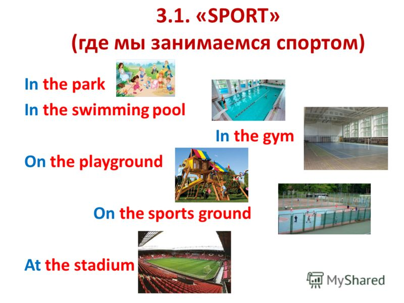 3.1. «SPORT» (где мы занимаемся спортом) In the park In the swimming pool In the gym On the playground On the sports ground At the stadium